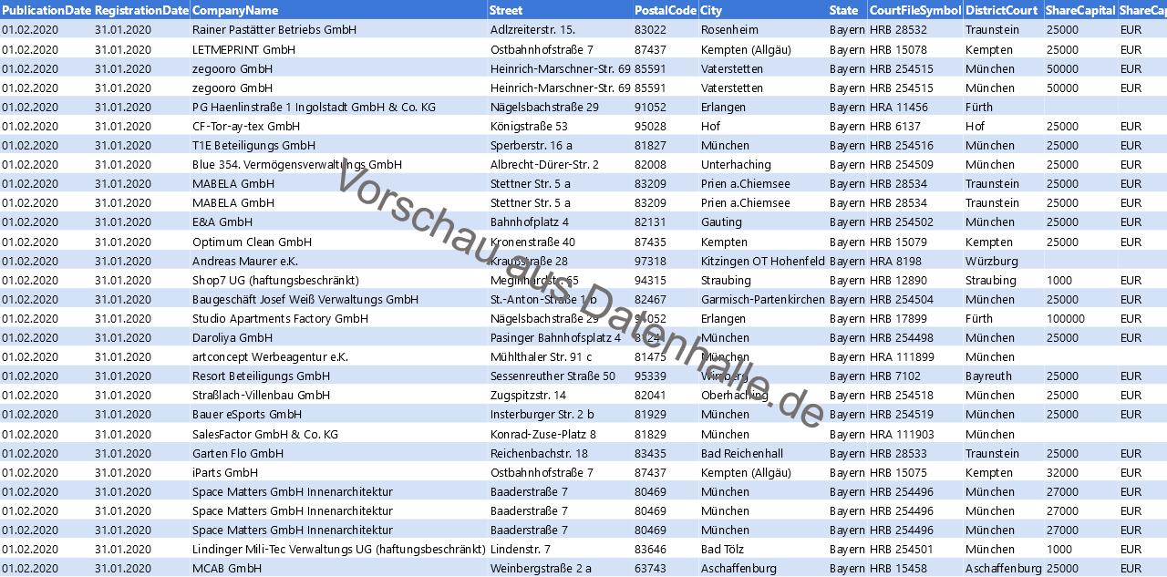 Vorschaubild vom Datensatz Firmengründungen im Februar 2020