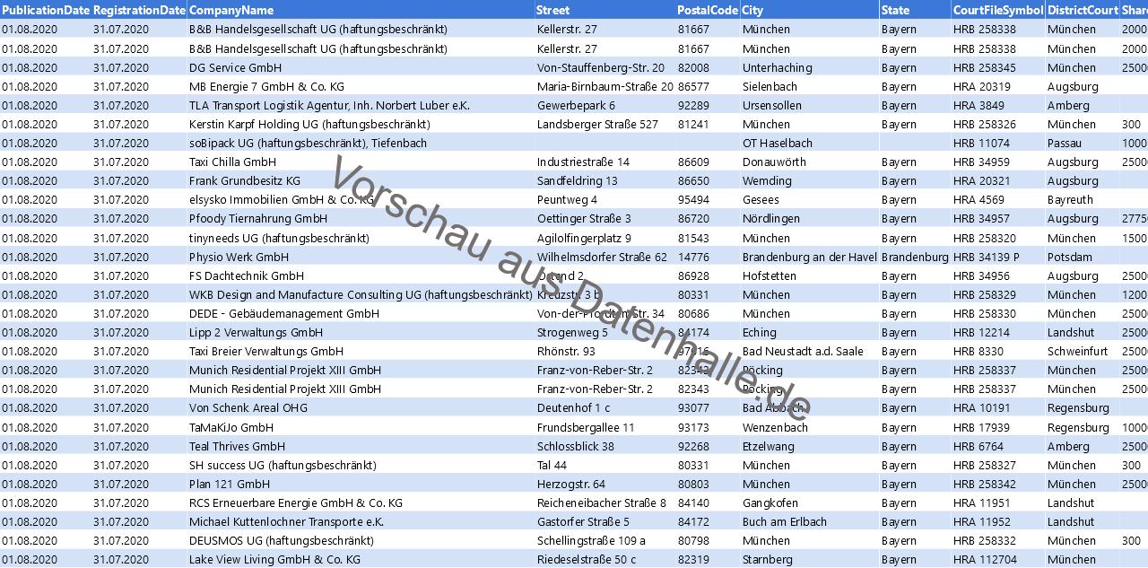 Vorschaubild vom Datensatz Firmengründungen im August 2020