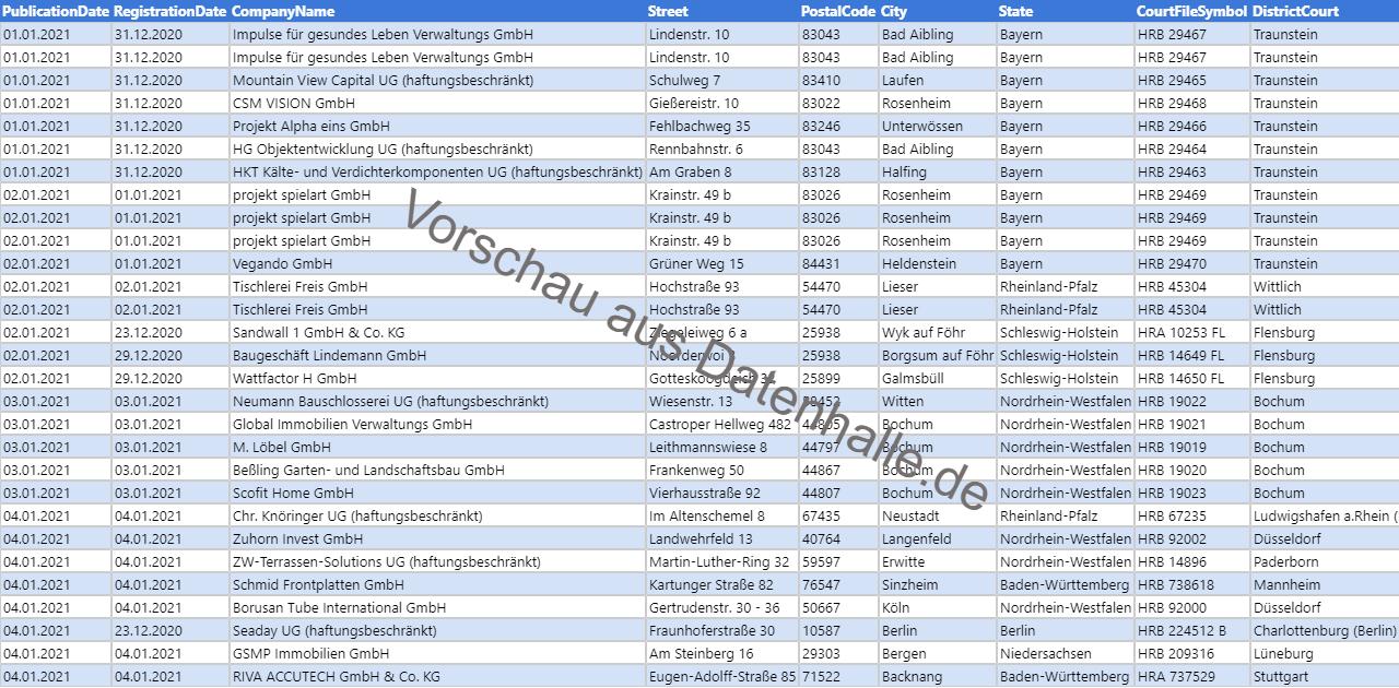 Vorschaubild vom Datensatz Firmengründungen im Januar 2021