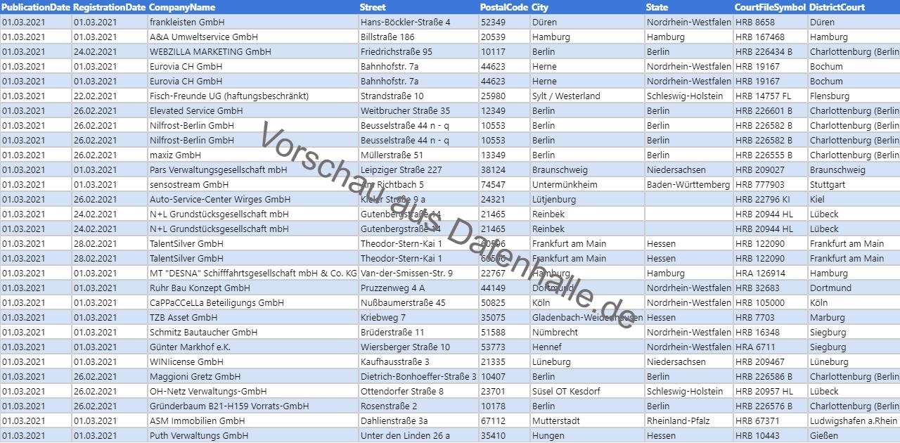 Vorschaubild vom Datensatz Firmengründungen im März 2021